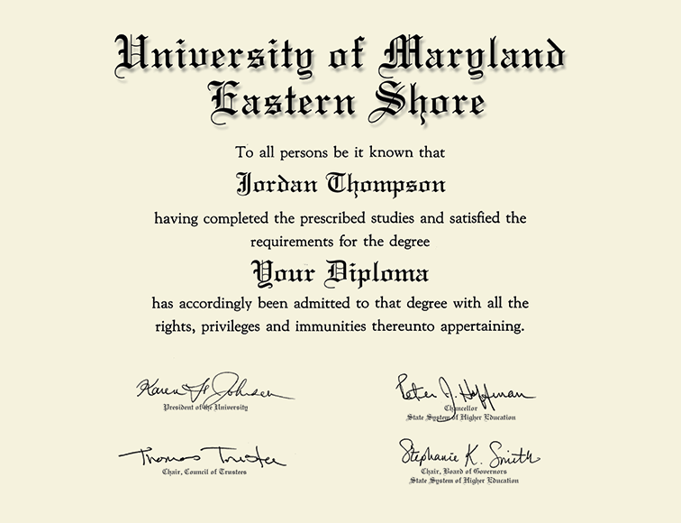 University Of Maryland Eastern Shore Silver Engraved