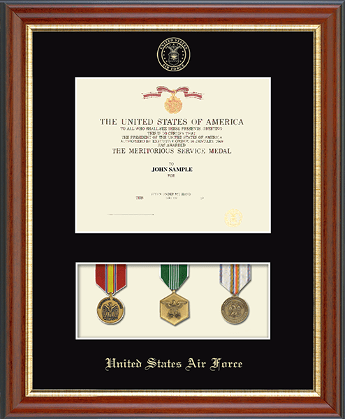 United States Air Force Medal Display Certificate Frame In