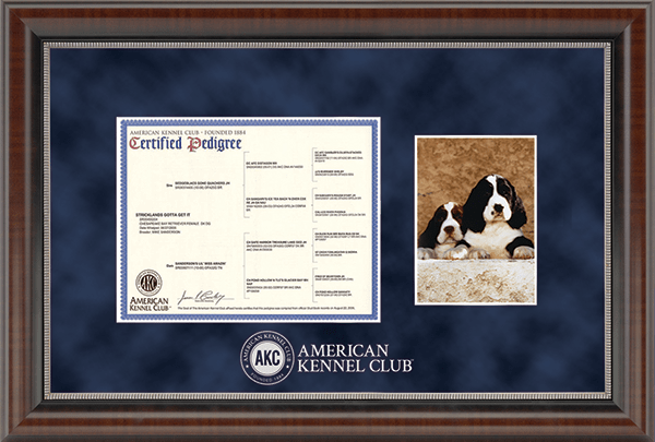 american kennel club certificate frame silver embossed pedigree 5 x 7 photo