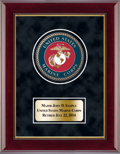 U.S. Marine Corps Masterpiece Medallion Award Frame in Gallery