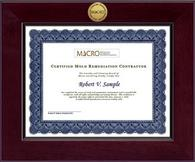 Mold Inspection Consulting and Remediation Organization Diploma Frame - Century Gold Engraved Certificate Frame in Cordova