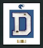 Darien High School in Connecticut Varsity Letter Frame - Varsity Letter Frame in Omega