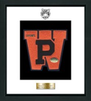 White Plains High School in New York Varsity Letter Frame - Varsity Letter Frame in Omega