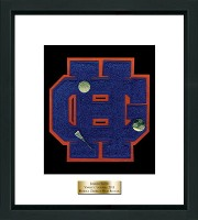 Horace Greeley High School in New York Varsity Letter Frame - Varsity Letter Frame in Omega