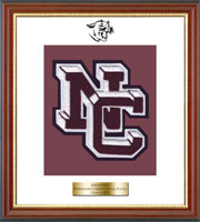 Northeastern Clinton Central School Varsity Letter Frame - Varsity Letter Frame in Newport