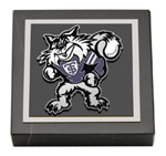 University of St. Thomas Paperweight - Spirit Medallion Paperweight