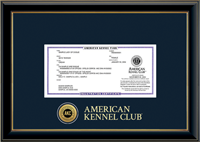 American Kennel Club Registration Frame - Engraved Medallion Registration Frame in Onexa Gold