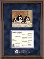 American Kennel Club Certificate Frame - Silver Embossed Pedigree & 8' x 10' Photo Frame in Chateau