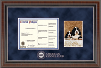 American Kennel Club Certificate Frame - Silver Embossed Pedigree & 5' x 7' Photo Frame in Chateau