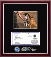 American Kennel Club Photo Frame - Masterpiece Medallion Registration & 5' x 7' Photo Frame in Gallery Silver
