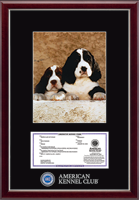 American Kennel Club Photo Frame - Masterpiece Medallion Registration & 8' x 10' Photo Frame in Gallery Silver