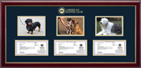 American Kennel Club Photo & Registration Frame - Triple Photo/Registration Frame in Gallery