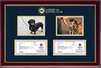 American Kennel Club Photo & Registration Frame - Double Photo/Registration Frame in Gallery