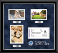American Kennel Club Photo & Registration Frame - Masterpiece Medallion Keepsake Photo/Registration Frame in Onyx Silver
