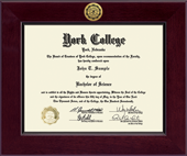 York College of Nebraska Diploma Frame - Century Gold Engraved Diploma Frame in Cordova