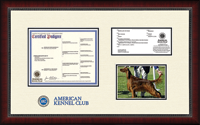 American Kennel Club Certificate Frame - Dimensions Pedigree Certificate/Registration & 5'x7' Photo Frame in Sutton