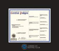 American Kennel Club Certificate Frame - Spectrum Wall Certificate Frame in Expo Black