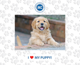 American Kennel Club Photo Frame - I love My Puppy Spectrum Pattern Photo Frame